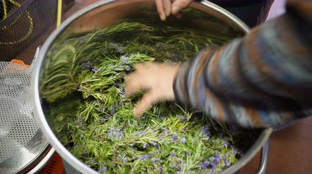 kolínská voda : Production of perfume essences using steam in a distillation cube in a small alpine village. An elderly man puts rosemary leaves and flowers in the distillation apparatus. Real people. Dostupné videozáznamy