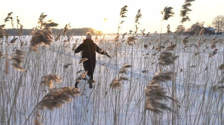 junco : Winter fun snow vacation. Young woman with dog walking among the reeds on the beach of the frozen sea, lake in sunny day in Scandinavia. Slow motion