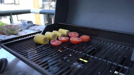 segurelha : Cooking grilled vegetables. Close up. Slow Motion