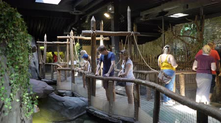 terrarium : KRISTIANSAND, NORWAY - JULY 07, 2018: Visitors to the zoo in the pavilion reptiles. The Dyreparken is a leisure park with animals, summer theatre and other attractions, has over 800 animals