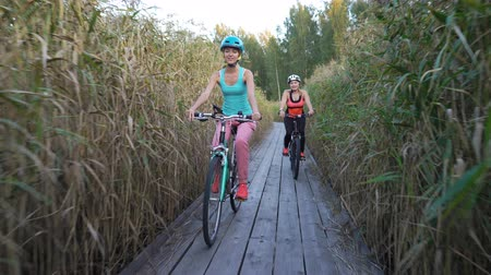 recreational park : Two young women ride bicycles on a wooden ecological trail among the reeds