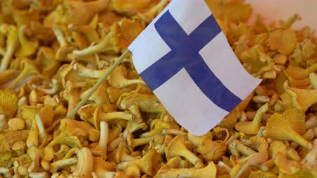 fince : Lots of chanterelles on the counter of the Helsinki street market Stok Video