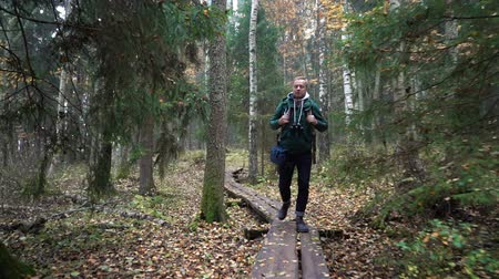 чаща : A middle-aged man with a backpack walking along an ecological natural educational trail through the northern autumn forest in a nature park in Finland. Slow motion