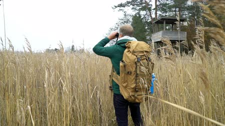 kamış : A middle-aged man with a backpack walks along a water path through reeds to birdwatching tower on a lake, watching birds with binoculars in autumn in Finland. Slow motion