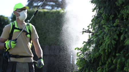 bevruchting : Caucasian Gardener with Professional Insecticide Spraying Equipment. Garden Plants Insecticide.