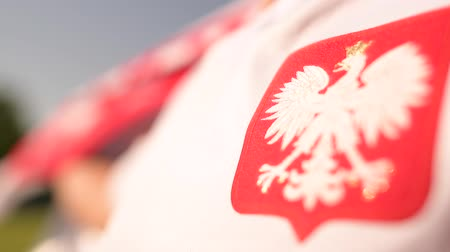 вратарь : Polish National Symbol. White Eagle on the Soccer Player Tshirt. Стоковые видеозаписи