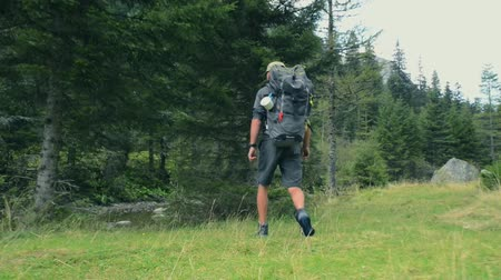 アウトバック : Men Walking on the Trail. Hiking on Mountain Trail 動画素材