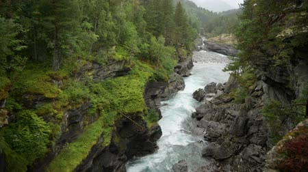 doğa : Norwegian Landscape in Southwestern Norway. Scenic River and the Wilderness