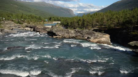 silvicultura : Summer Norwegian Scenery with River and the Wilderness