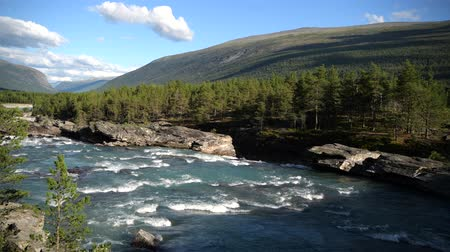 silvicultura : Mid August in the Norway. Scenic Norwegian Landscape with Glacial River.