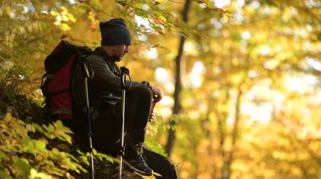 silvicultura : Hiker with Backpack Taking a Moment to Enjoy Scenic Forest Fall Foliage