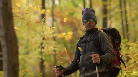 silvicultura : Caucasian Fall Foliage Hiker with Backpack. Falling Leaves in Slow Motion Footage. Vídeos