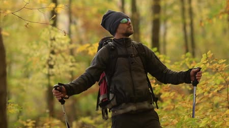 silvicultura : Hiker Enjoying Scenic Fall Foliage While on a Trailhead. Caucasian Men in His 30s with Sunglasses.