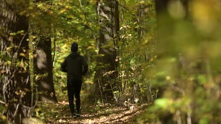 silvicultura : Slow Motion Footage of Running Men in the Forest. Scenic Autumn Trailhead.
