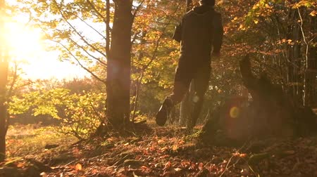 silvicultura : Scenic Sunset and the Men Running in a Forest. Slow Motion Footage