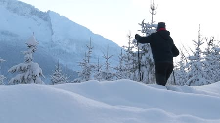 silvicultura : Scenic Winter Weather Scenery. Spruce Forest Covered by Heavy Snow. Stock Footage