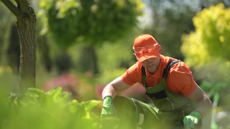 ogrodnik : Caucasian Men in a Garden. Landscaping Job. Wideo