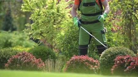 namiętność : Pesticide Garden Plants Spraying with Professional Equipment by Caucasian Gardener in His 30s