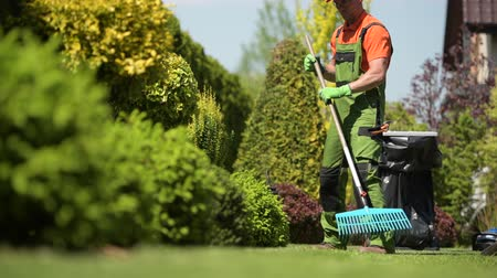 ogrodnik : Worker Raking Grass Field in a Garden. Caucasian Gardener in His 30s. Wideo
