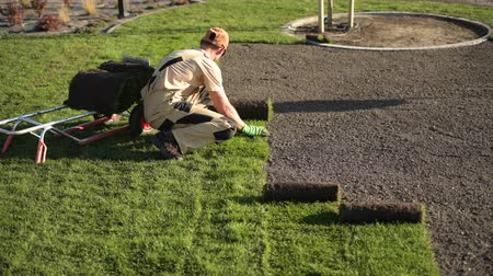 tekercselt : Caucasian Turf Grass Installer. Replacing Old Lawn with Fresh Natural Grass.