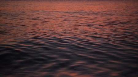 sunrise light : Calm and Warm Tropical Water of the Sea Closeup Video. Nature Background.