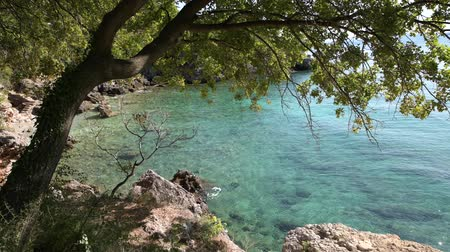 hırvat : Mediterranean Sea Coast. Northern Croatia, Europe. Adriatic Sea Coast Turquoise Bay Water. Stok Video