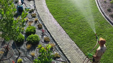 installer : Aerial Footage of Professional Gardener with Garden Hose Watering Newly Installed Natural Grass Turfs in a Garden.