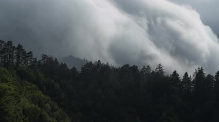 předpovídání : Southern Austria. Orographic Clouds Develop in Response to the Forced Lifting of Air by Topographical Features on the Earths Surface Like Mountains