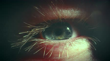 irys : Eye Closeup of Caucasian Human Male in His 30s