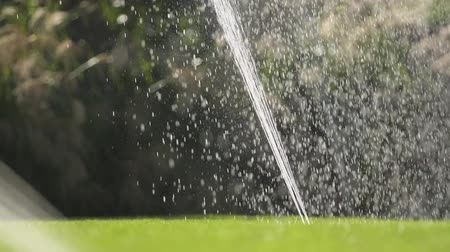 ajustando : Slow Motion of Backyard Lawn Watering Using Underground Grass Irrigation System.