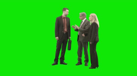 chroma key background : greenscreen people - business group discussion