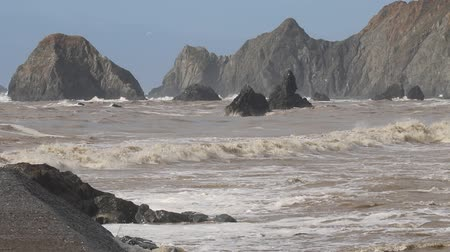Swirling waves on River end. The Russian river coloring brown the Pacific ocean after rain. Seagulls and Seals. Goat Rock Beach, Sonoma County, California winter.