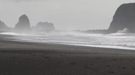 Swirling waves on River end. The Russian river coloring brown the Pacific ocean after rain. Goat Rock Beach, Sonoma County, California winter.