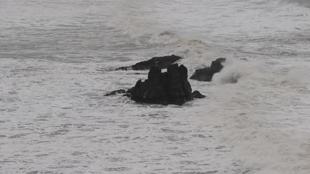 The Pacific Ocean. Swirling waves are on Pacific ocean after rain, Goat Rock Beach, Sonoma County, California winter.