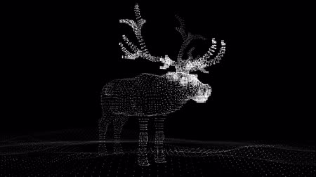 alce : Christmas festive deer of luminous points. Computer illustration in ultra modern view. Vídeos