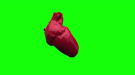 repetição : The red polygon heart beats. Computer three-dimensional graphics. Slow rotation of the object. Heart on green background for use in your project.