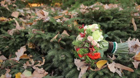 ortanca : Brides bouquet on the branches of spruce
