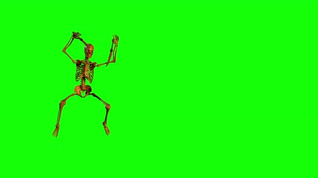 crânio : Dancing Skeleton (left side). Skeleton dances wildly before a Green Screen background. Skeleton  juggles 2 swords during a frenetic dance. Choreography is stylish and fast paced. Dance is only on the left side. Right side free for messages. Looping.
