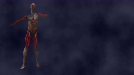 kaslı : Zombie Walk (left side).  Zombie Skeleton with torn muscles stiff walks through a heavy fog.  Zombie walks only on the left side of the screen. Right side of screen remains free for messages. Looping.