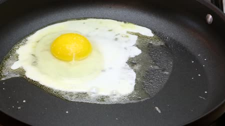 fritos : Fried egg in a frying pan, time lapse