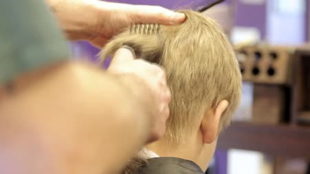 corte de cabelo : Hairdresser cutting hair by electric trimmer