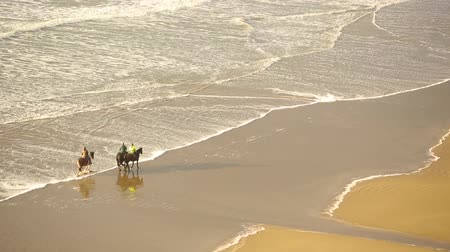 senaryo : Aerial view of people riding horses on the beach. Three persons with horses at seaside having a leisure walk together. Sport and adventure concepts, epic scenario.