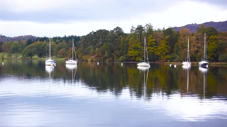 kotvící : Sailing boats and trees reflections on the water in the Lake District, UK. Boats anchored next to the pier with a woodland on background. Autumn colours and mood, travel and nature concepts Dostupné videozáznamy