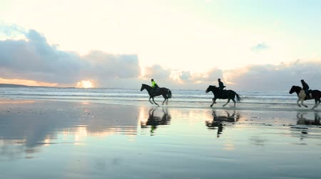 koňmo : People riding horses at gallop on the beach at sunset. Three people riding horses at seaside on a cloudy day. Slow motion video, backlight with silhouette. Sport and travel concepts