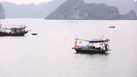 yüzer : Vietnam, fisherman typical boat in Ha Long Bay. Wooden small boats in the famous lagoon of Ha Long Bay with limestone rocks and islands on background.