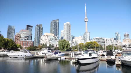 ontario : Toronto skyline view with pier on foreground. Modern buildings and skyscrapers in Toronto, the capital city of Ontario, Canada, with boats on foreground. Architecture and travel. Stock Footage