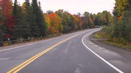 Driving on American highway with trees around in autumn. Empty road in Ontario, Canada, wtih colorful maple trees during the fall season. Travel and transportation concepts