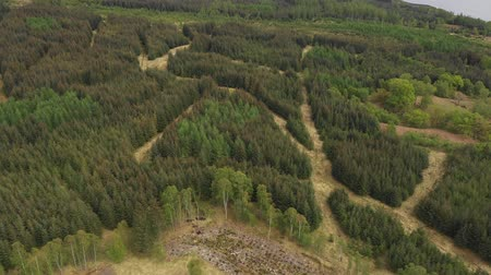 Aerial view of woodland and hills in Scotland - Green lanscapes in the Isle of Skye, nature and travel concepts