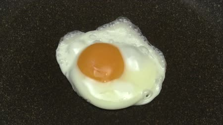 jaune d oeuf : Fried Egg - Time Lapse