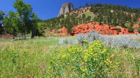 diabeł : Beautiful natural scenery at Devils Tower National Monument in northeast Wyoming